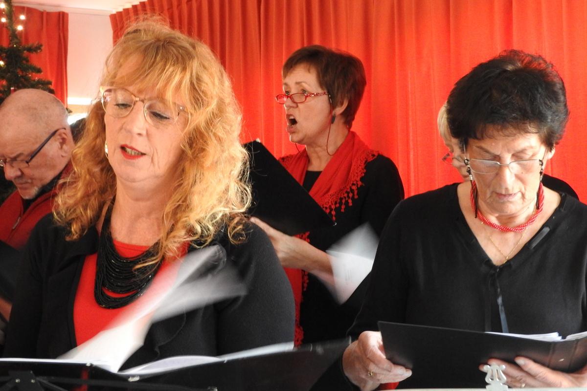 recital-torhout-30-12-2016-14-45-51