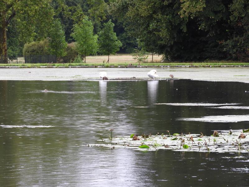 Koorreis Val-d'Oise 17-08-2019 14-49-12